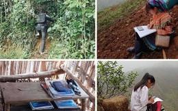 Chùm ảnh nhói lòng: Học sinh vùng cao dựng lán giữa đồi bắt sóng, vừa học online vừa làm nương rẫy, nhặt củi, vác gỗ