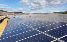 Covid-19 khiến điện gió, điện mặt trời liêu xiêu