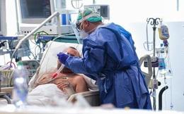 Nhà văn khoa học mô tả tường tận quá trình virus corona lây nhiễm, tấn công người bệnh