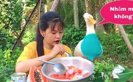 Bé Sâu - Cô gái miền Tây nổi tiếng khắp Tiktok nhờ loạt clip ăn uống dân dã cùng chú vịt bầu có khả năng diễn trước ống kính, giúp cô chủ kiếm bộn tiền