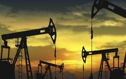 Giá dầu âm có ý nghĩa gì?