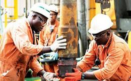 Thảm họa giá dầu đang tiếp tục trầm trọng hơn