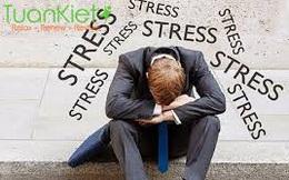 Ảnh hưởng của stress đến tính dục