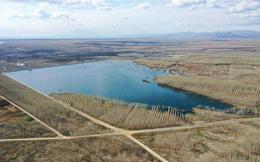 Tái sử dụng nước thải để phủ xanh sa mạc tại Trung Quốc