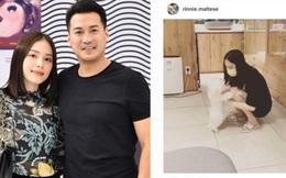 Phillip Nguyễn bất ngờ đăng ảnh chụp Linh Rin: Cặp đôi đã trở về bên nhau sau ít ngày rạn nứt?
