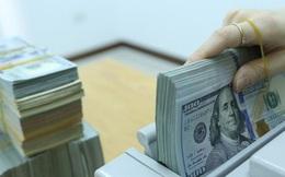 USD và nhiều ngoại tệ giảm giá mạnh