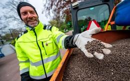 Đổ 1 tấn phân gà vào công viên để ngăn dân tụ tập mùa COVID-19