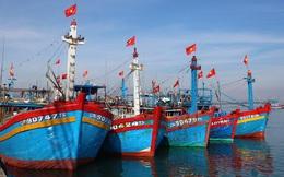 Hội nghề cá Việt Nam phản đối lệnh cấm bắt cá phi lý của Trung Quốc trên biển Đông