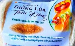 Bình Định khuyến cáo về giống lúa quảng cáo 'ăn vào chữa được bệnh'