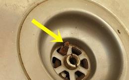 Đang rửa bát thì thấy vật lạ thò lên từ dưới bồn rửa, người đàn ông rùng mình khi biết mình vừa may mắn thoát chết