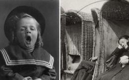 100 năm trước từng có một căn bệnh kì lạ bị bỏ quên, khiến hàng triệu người buồn ngủ, bị mắc kẹt trong cơ thể của chính mình và tử vong