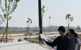 Thành lập 3 thị xã tại Thanh Hóa, Bình Định, Phú Yên, liệu có xảy ra nguy cơ sốt đất nền cục bộ?