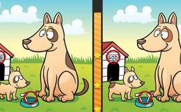 Tại sao trò chơi tìm điểm khác nhau giữa hai bức ảnh lại thường làm khó bạn?