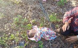 Người phụ nữ phát hiện em bé bị bỏ rơi khi đang làm việc đồng áng, mẹ đứa trẻ sau khi bị bắt đã giải thích lý do khó chấp nhận