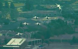 Video phản ứng nhanh chóng của phi đội Mỹ tránh tai nạn trên bầu trời