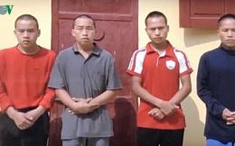 Lĩnh án tù vì cướp tang vật, tấn công kiểm lâm sau phá rừng tại Sa Pa