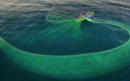 Cảnh người dân tung lưới đánh cá ở Phú Yên đầy mê hoặc được báo nước ngoài đăng tải và ca ngợi hết lời