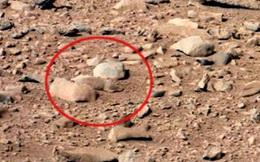 Những hình ảnh kỳ lạ nhất từng được chụp trên sao Hỏa