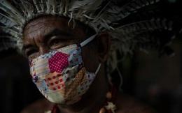 Thổ dân Brazil chế thuốc gia truyền trị triệu chứng COVID-19 từ vỏ xoài, mật ong