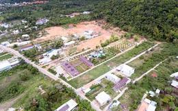 Chuyển nhượng hàng vạn thửa đất nông nghiệp tại Phú Quốc: Ai 'tiếp tay'?
