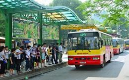 Hà Nội muốn huy động gần 1.000 tỷ đồng xây dựng 600 nhà chờ xe buýt tiêu chuẩn châu Âu