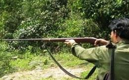 Đi săn trong rừng, bố bắn nhầm khiến con tử vong tại Điện Biên