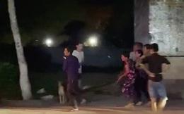 """Clip cận cảnh """"bé Na"""" khổng lồ bị nhiều người ở Vĩnh Long vây bắt khi đang lang thang tìm đường về nhà"""