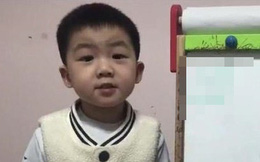 Mới 4 tuổi, cậu bé này đã sở hữu khả năng đáng kinh ngạc khiến nhiều người lớn thốt lên: Tôi còn thua kém 1 đứa trẻ!