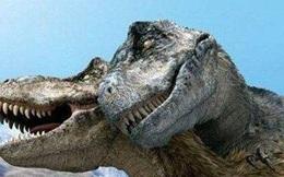 Nghiên cứu mới cho thấy khủng long bạo chúa Tyrannosaurus dựa vào giác quan thứ sáu để 'yêu'?