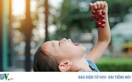 8 loại trái cây và rau củ màu tím mà bạn nên ăn hàng ngày