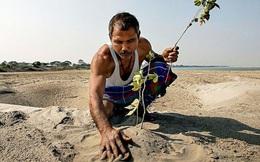 'Người rừng Ấn Độ' mỗi ngày trồng 1 cây xanh trong 40 năm, cái kết khiến người đời sau thầm cảm phục