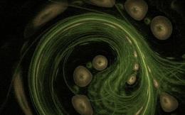 Các nhà khoa học phát hiện trạng thái vật chất thứ 5, mở ra tiềm năng mới về trí tuệ nhân tạo