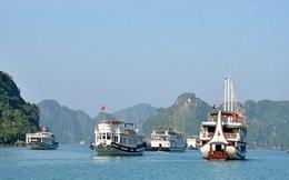 Thu tiền cao, một tàu du lịch ở Quảng Ninh bị cấm đón khách 3 tháng