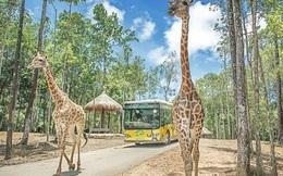 Hà Nội chuẩn bị có Vinpearl Land rộng 80ha tại Gia Lâm kết hợp Safari dưới nước và trên cạn