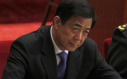 700 học giả Trung Quốc viết thư ủng hộ Bạc Hy Lai