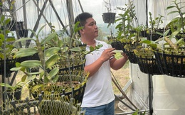 Ông chủ vườn lan 9x Lê Văn Nam chia sẻ niềm đam mê lan