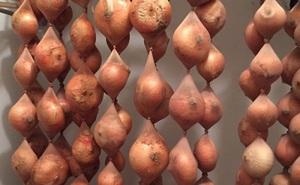 17 mẹo bảo quản giữ thực phẩm tươi ngon lâu hơn: Số 7 nhiều người hay nhầm lẫn