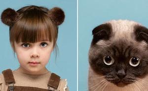 Bộ ảnh chứng minh chủ và thú cưng chung sống càng lâu càng giống nhau