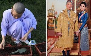 Trong khi Hoàng quý phi được phục vị, hình ảnh vợ cũ của Vua Thái Lan gầy gò hốc hác, đang trồng rau trong chùa được chia sẻ gây xôn xao MXH