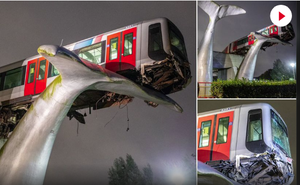 Cá voi cứu tàu là có thật: Câu chuyện trùng hợp có 1 không 2 tại Hà Lan