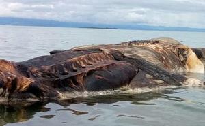 Xúm lại xẻ thịt thủy quái mắc cạn dài 30 m, hàng trăm dân làng đột ngột mất mạng