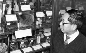 Chuyện kỳ bí về các mảnh thi thể nạn nhân ở Hiroshima