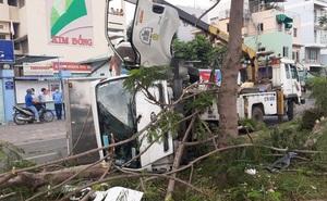 TP.HCM: Xe tải tông gãy 2 cây xanh rồi lật ngang, tài xế và phụ xe bò từ cabin thoát thân