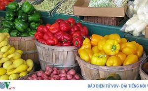 Những trái cây nào nên và không nên bỏ hạt?