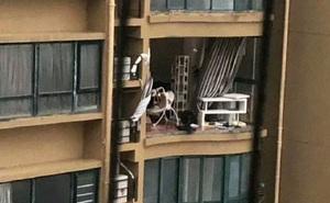 """Bão Hagupit xé toạc ban công """"chung cư cao cấp"""" ở TQ, cuốn bay người từ tầng 11 rơi xuống tử vong"""