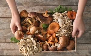Ăn nấm, giảm nguy cơ ung thư tuyến tiền liệt?