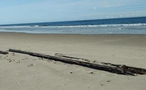 Xác tàu đắm bí ẩn nổi lên trên cát ở bãi biển Carolina