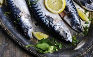 Những lợi ích dinh dưỡng tuyệt vời của cá thu