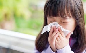 Căn bệnh khiến bé cứ ra ngoài khu vực có hoa chơi là khó thở