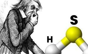 Chất khí nặng mùi này lại là chìa khóa giúp con người kéo dài tuổi thọ